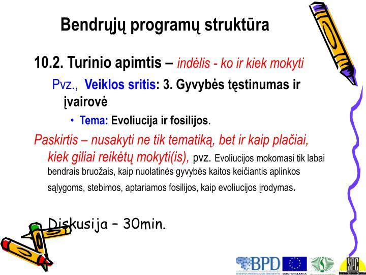 Bendrųjų programų struktūra