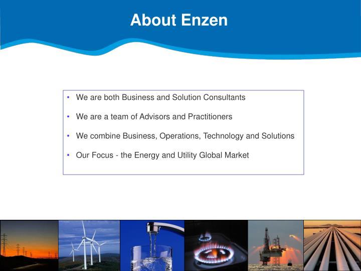 About Enzen