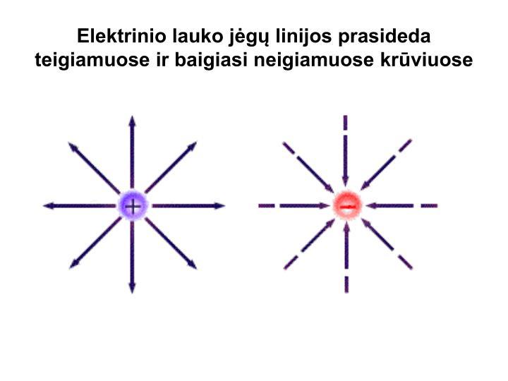 Elektrinio lauko jėgų linijos prasideda teigiamuose ir baigiasi neigiamuose krūviuose
