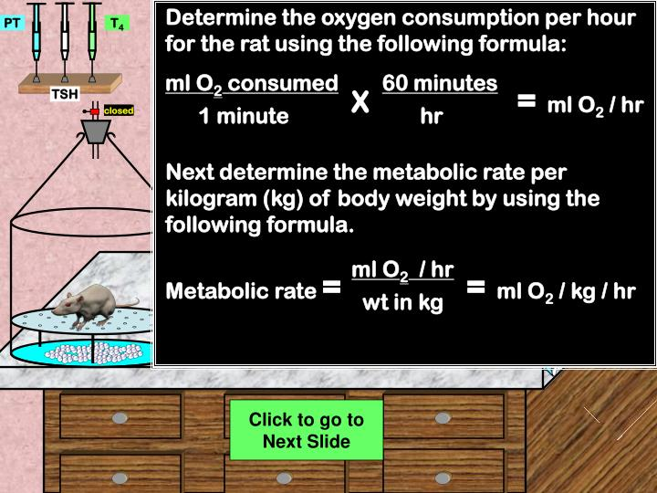 Determine the oxygen consumption per hour for the rat using the following formula: