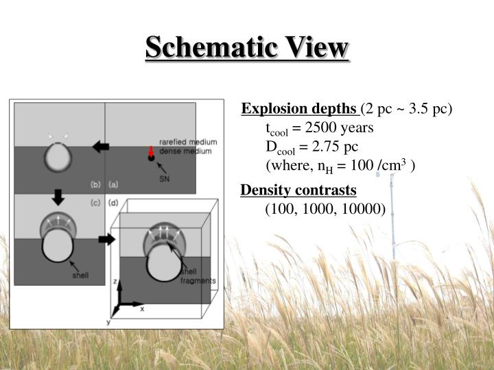 Schematic view