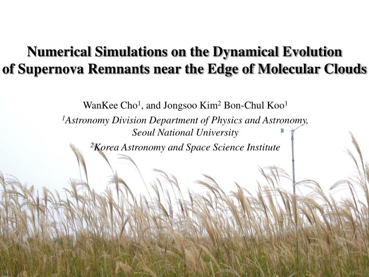 Numerical Simulations on the Dynamical Evolution