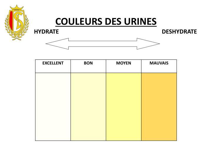 COULEURS DES URINES