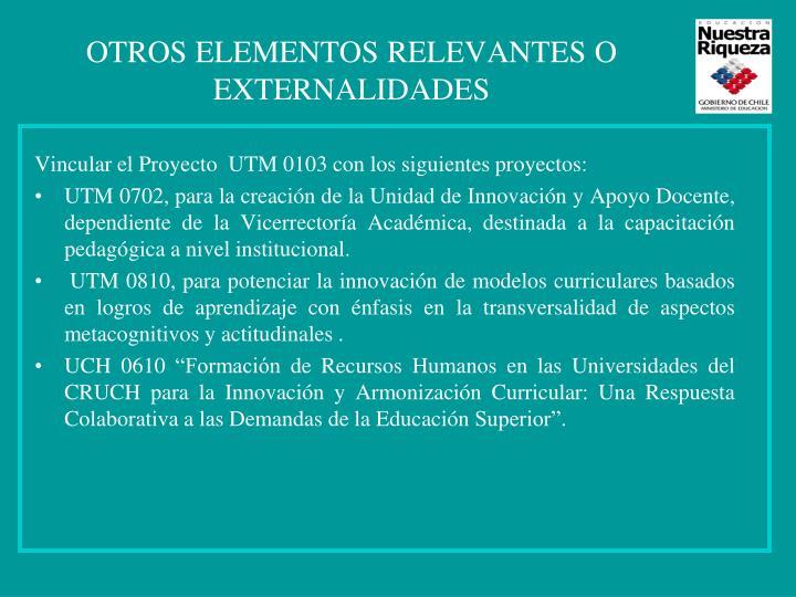 OTROS ELEMENTOS RELEVANTES O EXTERNALIDADES