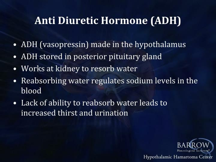 Anti Diuretic Hormone (ADH)