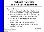 cultural diversity and visual impairment