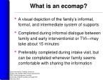 what is an ecomap
