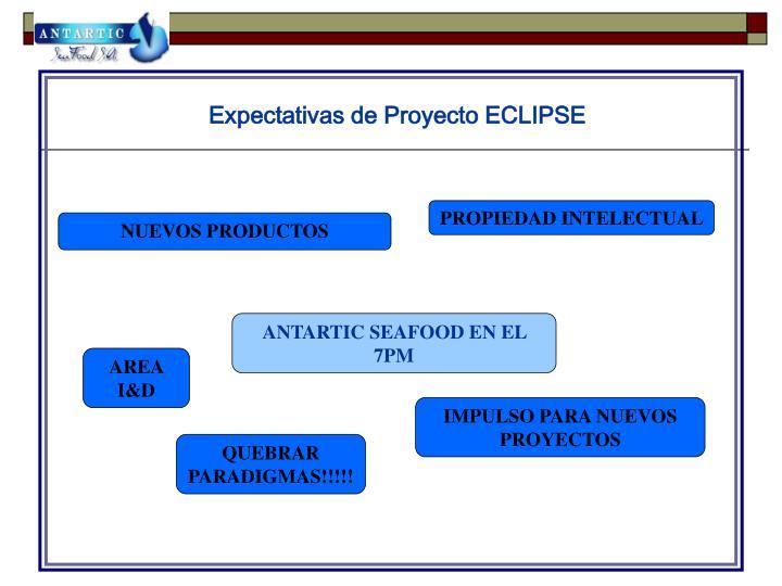 Expectativas de Proyecto ECLIPSE