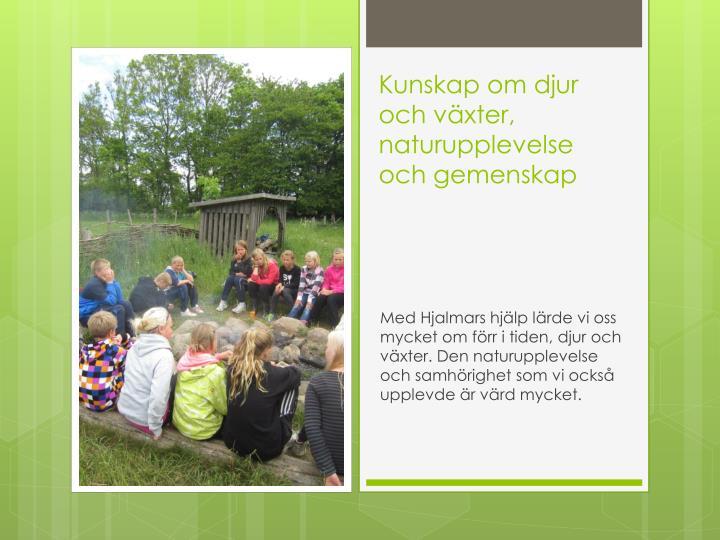Kunskap om djur och växter, naturupplevelse och gemenskap