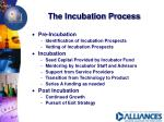 the incubation process