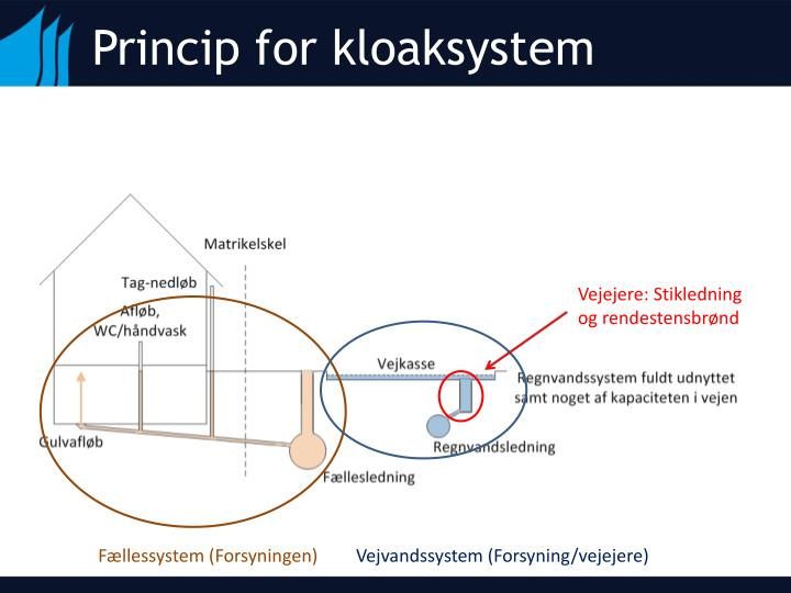 Princip for kloaksystem
