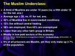 the muslim underclass