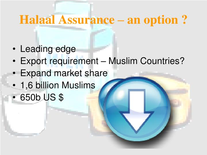Halaal Assurance – an option ?