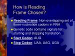 how is reading frame chosen