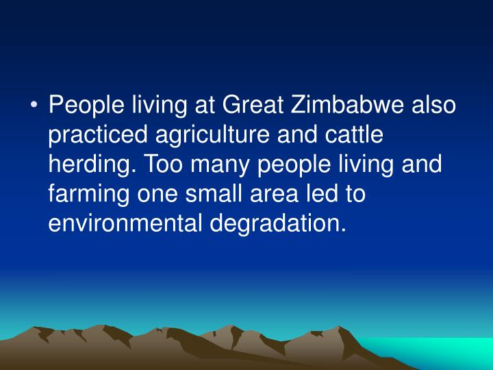 People living at Great Zimbabwe also practiced agriculture and cattle herding. Too many people living and farming one small area led to environmental degradation.