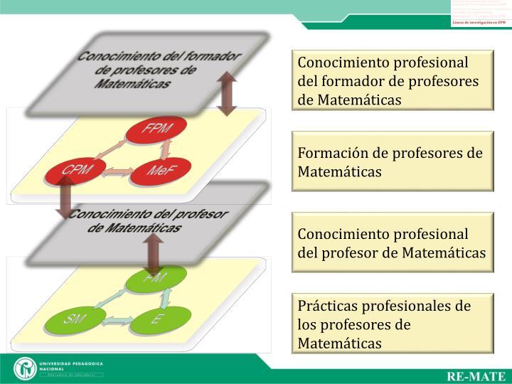 Conocimiento profesional del formador de profesores de Matemáticas