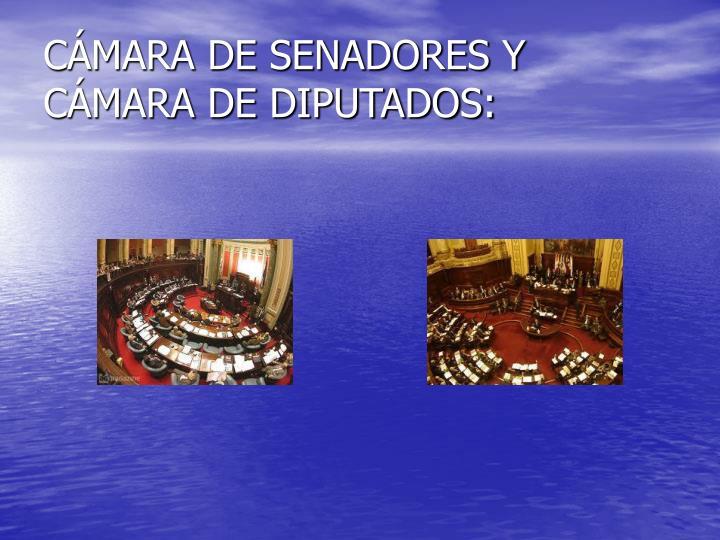 CÁMARA DE SENADORES Y CÁMARA DE DIPUTADOS: