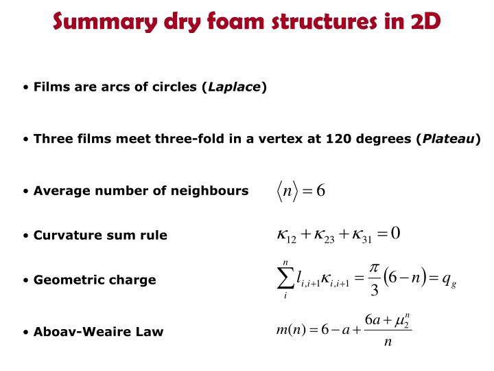 Summary dry foam structures in 2D