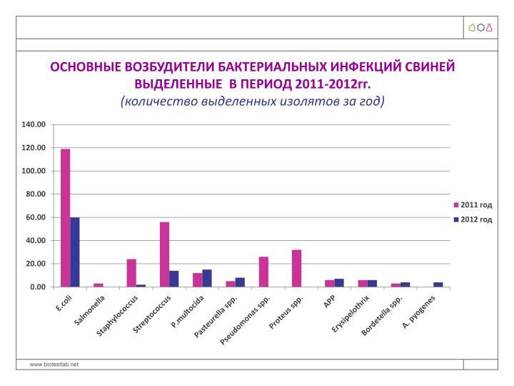 ОСНОВНЫЕ ВОЗБУДИТЕЛИ БАКТЕРИАЛЬНЫХ ИНФЕКЦИЙ СВИНЕЙ ВЫДЕЛЕННЫЕ  В ПЕРИОД 2011-2012гг.