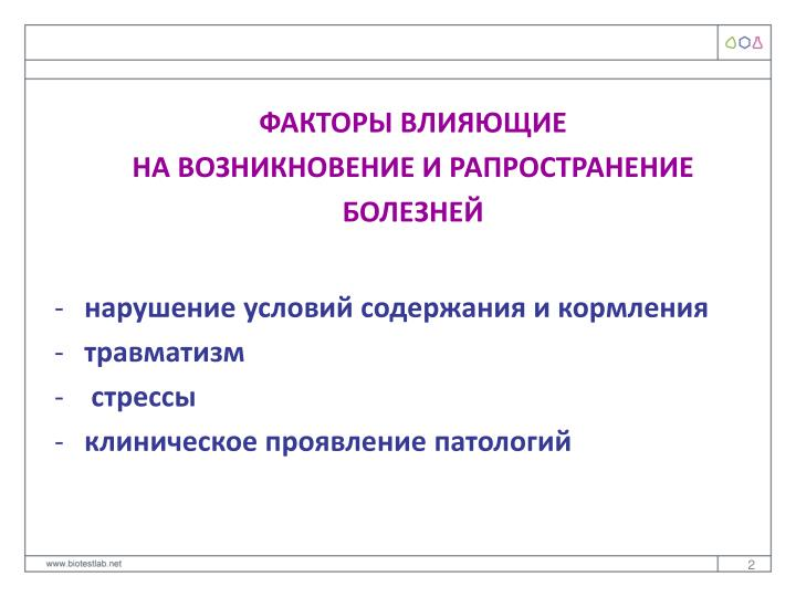 ФАКТОРЫ ВЛИЯЮЩИЕ
