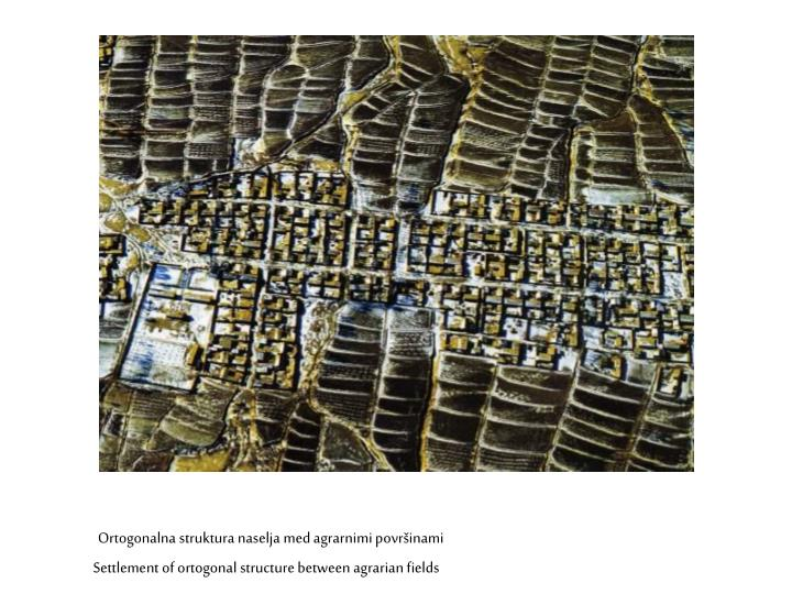 Ortogonalna struktura naselja med agrarnimi površinami