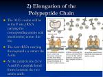 2 elongation of the polypeptide chain