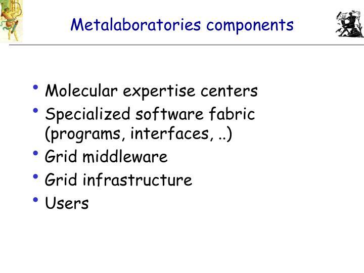 Metalaboratories components