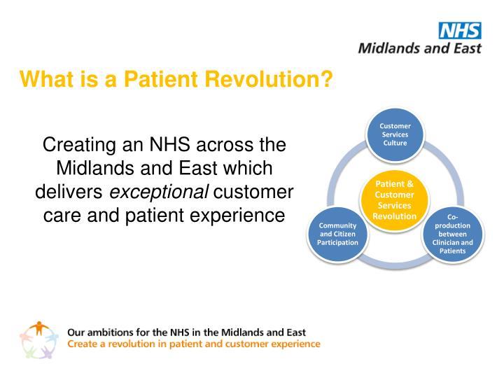 What is a Patient Revolution?