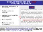 bundles prevencion brc cusp programa de michigan