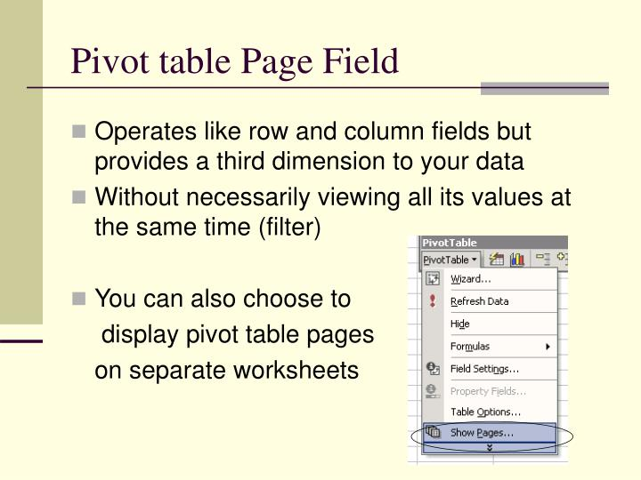 Pivot table Page Field