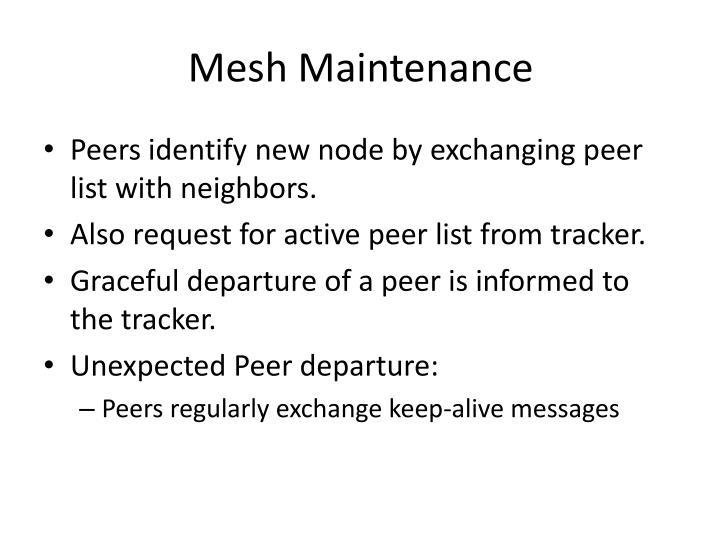 Mesh Maintenance