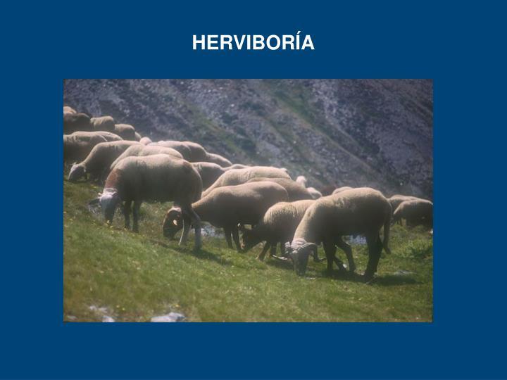 HERVIBORÍA