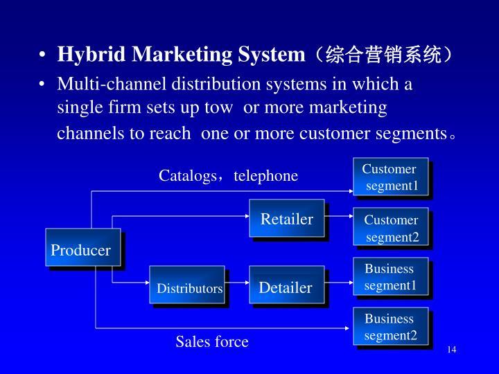 Hybrid Marketing System