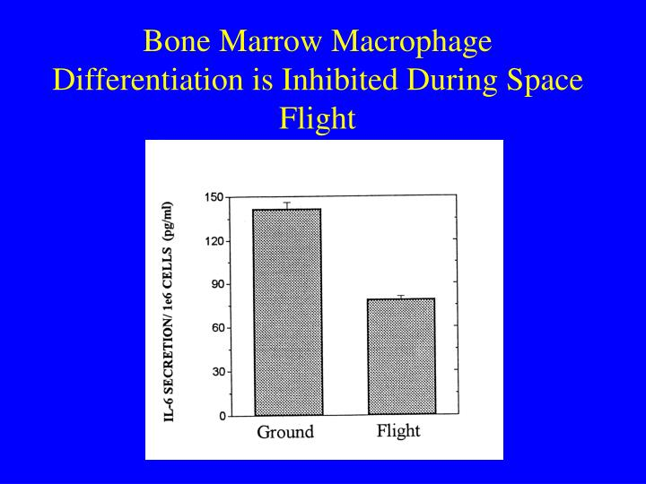Bone Marrow Macrophage Differentiation is Inhibited During Space Flight