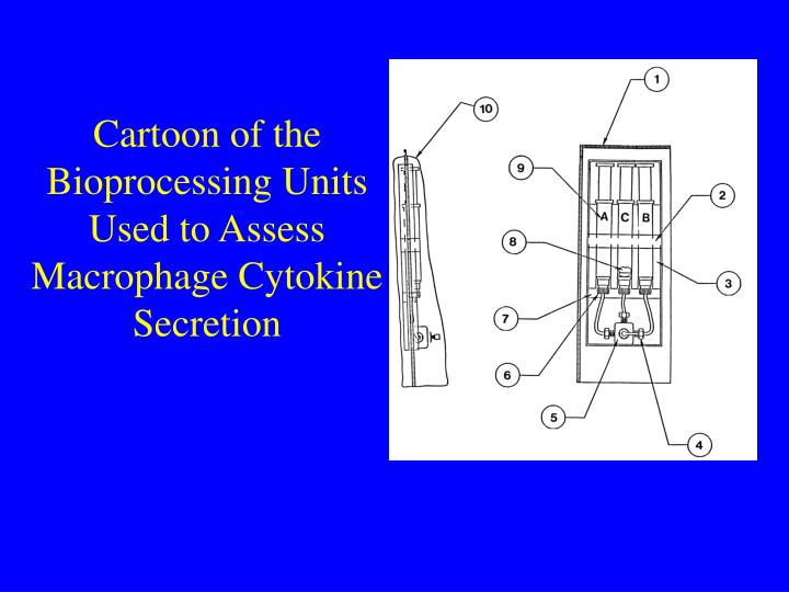 Cartoon of the Bioprocessing Units Used to Assess Macrophage Cytokine Secretion