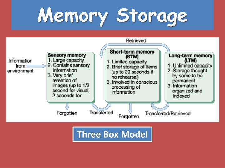 Memory Storage