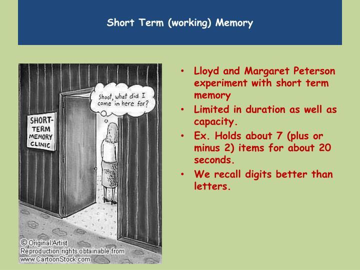 Short Term (working) Memory