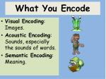 what you encode