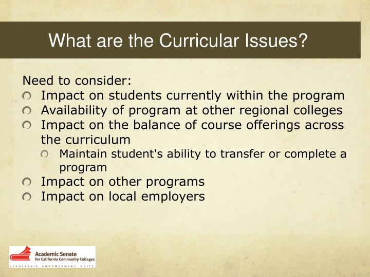 What are the Curricular Issues?