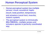 human perceptual system