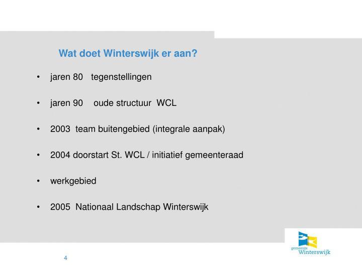 Wat doet Winterswijk er aan?