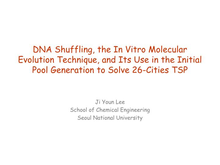 DNA Shuffling, the In Vitro Molecular Evolution Technique, and Its Use in the Initial Pool Generation to Solve 26-Cities TSP