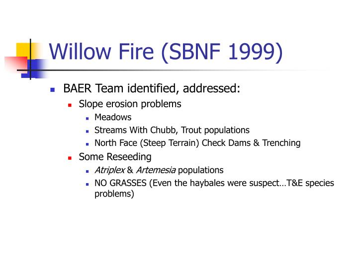 Willow Fire (SBNF 1999)