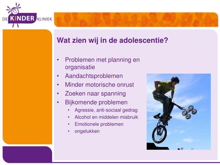 Wat zien wij in de adolescentie?