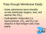 pass through membrane easily