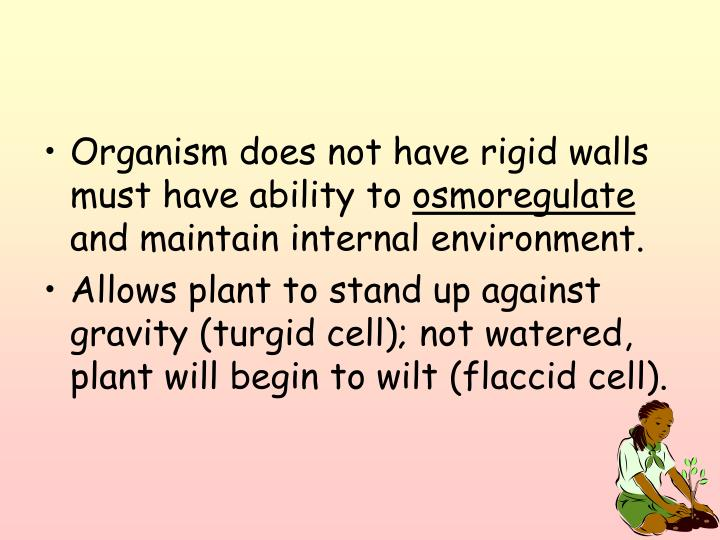 Organism does not have rigid walls must have ability to