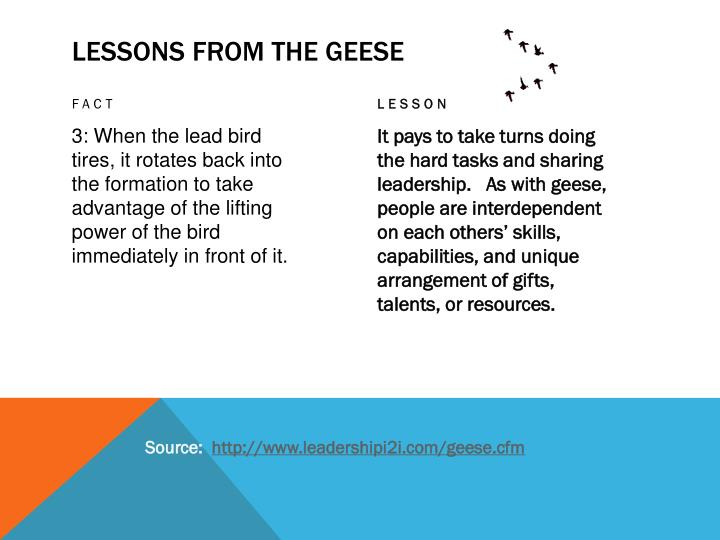 lessons from geese Poems and songs about canada geese, geese, and nature navigation list a hunter's poem lessons from geese  lesson if we have as much sense as geese, we will .