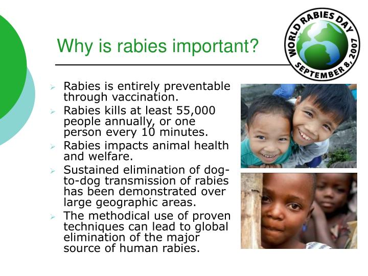 Why is rabies important?