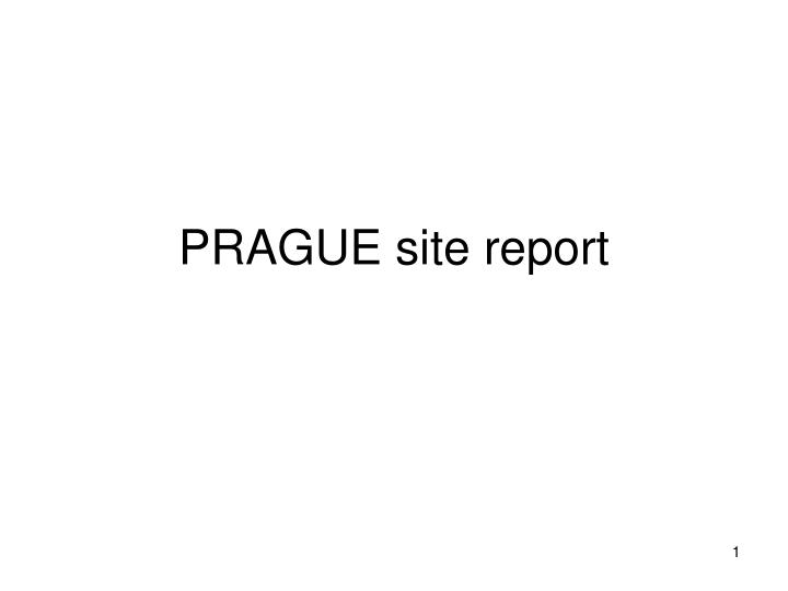 Prague site report
