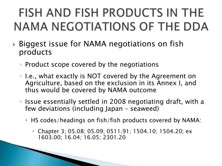 Biggest issue for NAMA negotiations on fish products